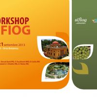 Workshop S.I.F.I.O.G. - icona-web.jpg