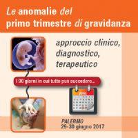 Le anomalie del primo trimestre di gravidanza - I 90 giorni in cui tutto può succedere - icona9_17.jpg