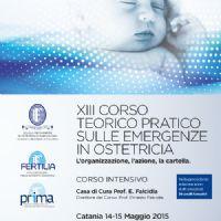 XIII Corso Teorico Pratico sulle Emergenze in Ostetricia : l`organizzazione, l`azione, la cartella - icona_corso_9-14.jpg
