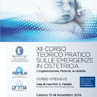 XII Corso Teorico Pratico sulle Emergenze in Ostetricia : l` organizzazione, l` azione, la cartella - xii_corso_emergenze-ico_13_14nov.jpg